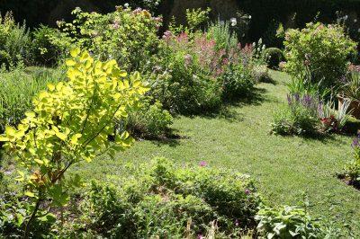 jardins medicinaux