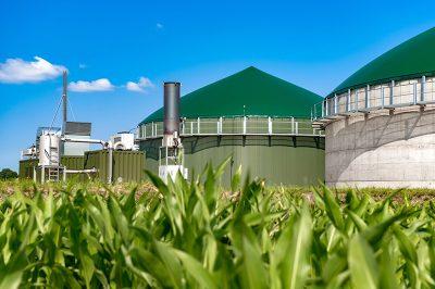 bioenergies