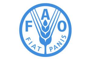 FAO Logo partennaire