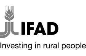 IFAD logo partennaire