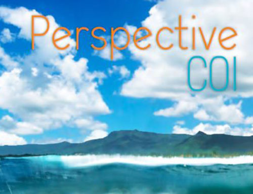 Perspective COI