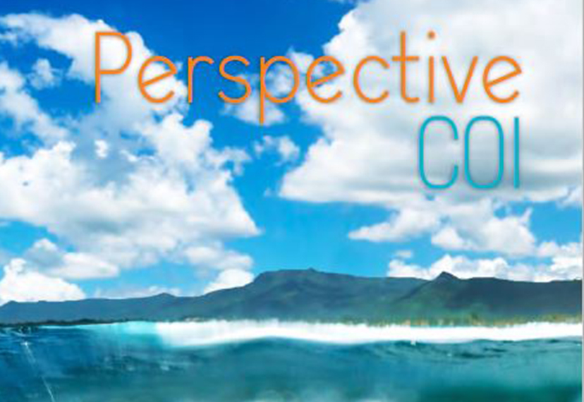 perspective-coi-img