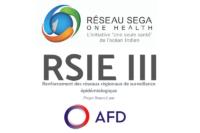 logo rsie