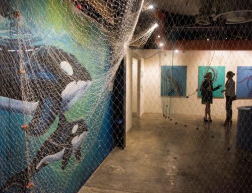 Réfraction, une exposition pour mieux connaitre l'océan que nous devons préserver