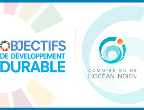 4 ans de l'Agenda 2030 : le bilan de la COI