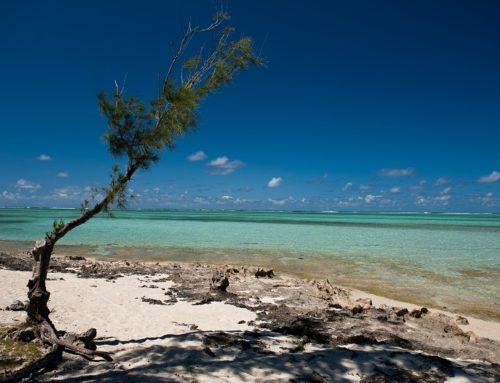 Résilience des zones côtières: un nouveau projet COI-AFD-FFEM