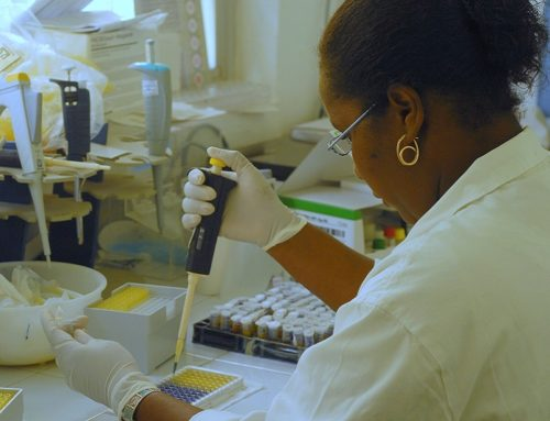 Coronavirus : le réseau SEGA-One Health sur le terrain