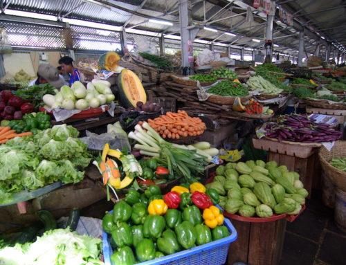 Covid-19et sécurité alimentaire: produire dans la région pour la région.
