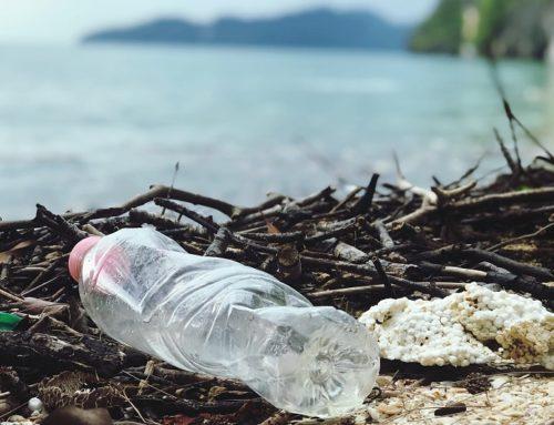 Mieux comprendre l'impact de la pollution plastique