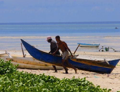 Aux Comores, la pêche artisanale à l'honneur