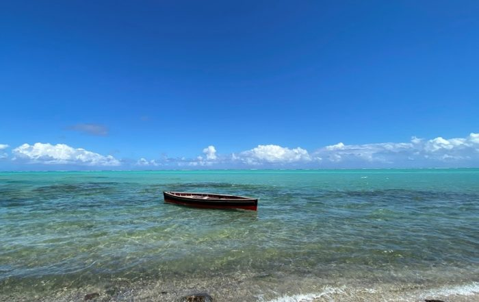 journee ocean coi developpement durable