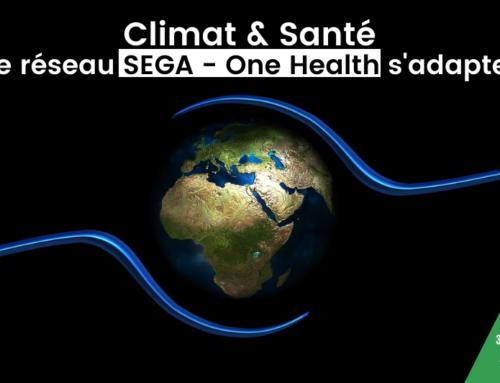Mieux comprendre le lien entre climat et santé