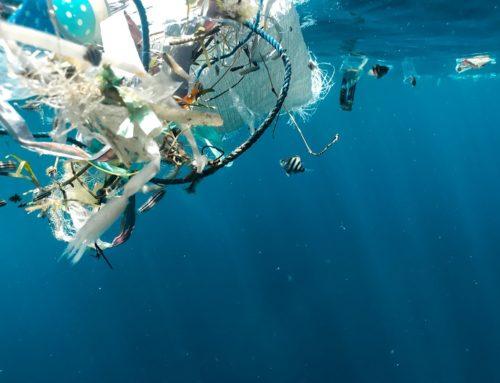 ExPLOI : lutter contre la pollution plastique