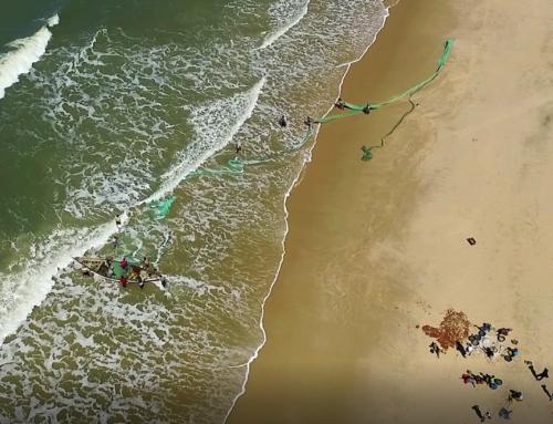 Governança compartilhada e crescimento para o nosso oceano